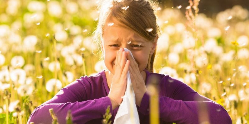 Surviving Allergy Season: 10 Natural Ways to Help